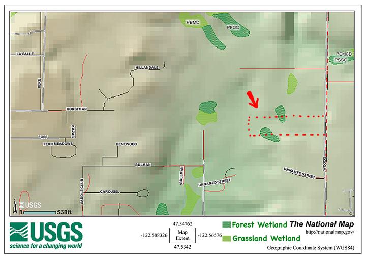 Winter Creek Forest USGS Wetlands Map